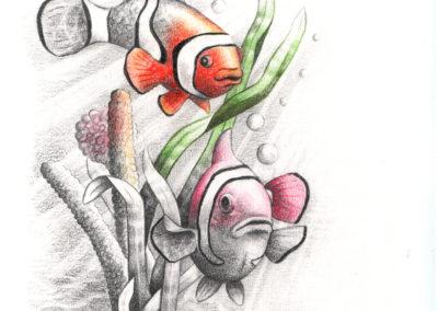 touchofcolourclownfish